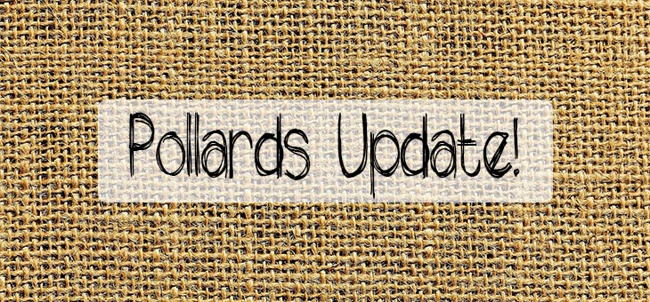 Pollards-Update-Blog-Feature-Image
