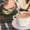 pollards-autumn-blog-latte-syrup-routin-1883-flavoured-chai-spice-pumpkin-wholesale-bulk-buy-purchase-stock-order-routinsyrup