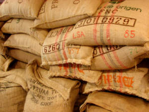 sacks-green-coffee-beans-ready-to-roast